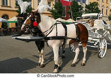 Tourist attraction in Krakow, Poland. Rentable horsedrawn landau.