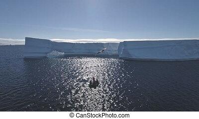 Tourist boat among Antarctica ocean. Aerial shot. - Tourist...