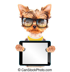tourist dog with tablet pc