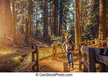 Tourist Exploring Sierra Nevada
