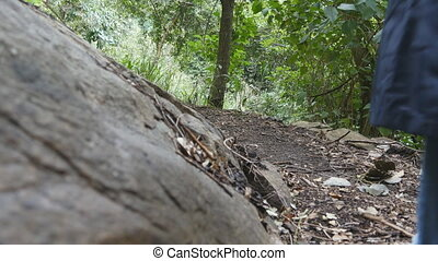 Tourist girl with backpack is walking along tropical forest. Female feet stepping at trail at the mountain wood. Young woman going at green jungle. Freedom travel concept. Low angle of view Close up