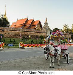 Tourist horse-drawn taxinin Thailand - Tourist horse-drawn...