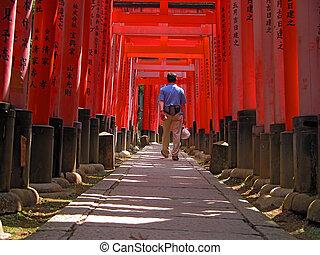 Tourist in Kyoto-Inari gates tunnel - Tourist walking in the...