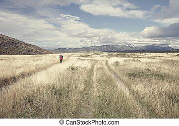 tourist, patagonia.