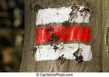 Tourist signs on the tree