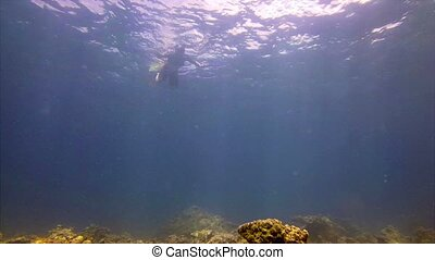 Tourist Snorkeling in the Warm Tropical Waters off Phuket, Thailand