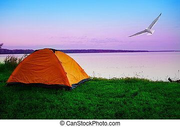 Tourist tent on shore of lake with seagull in morning sky