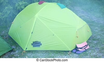 Tourist tents in a green forest