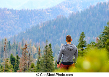 Tourist with backpack hiking in Sequoia National Park -...