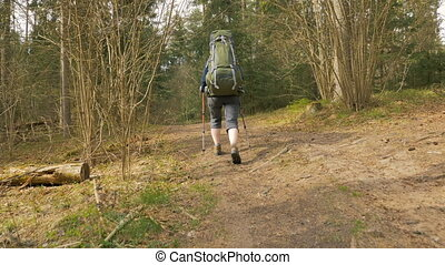 Tourist woman with backpack walks in the forest - flying camera shot