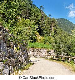 touriste, marche, piste, dans montagnes