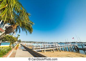 Touristic harbor in Balboa island