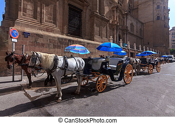 Traditional horse carriages in Malaga. Spain. Touristic transport