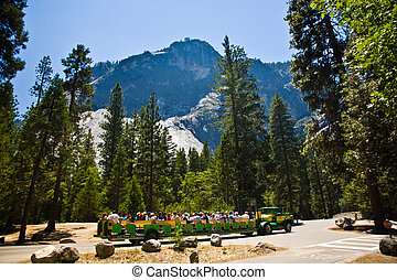 tourists are discovering the romantic valley of yosemite park in a tourist train