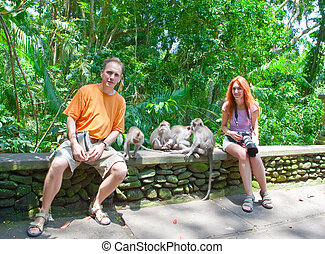 Tourists are photographed with monkeys in Sacred Monkey ...