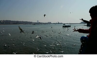 Tourists feeding flying seagulls