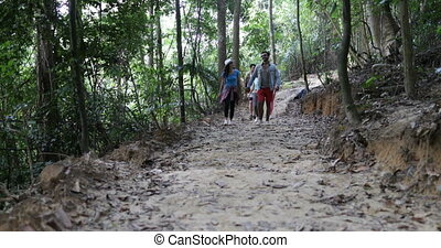 Tourists Group Trekking On Forest Path, Young Diverse Men...