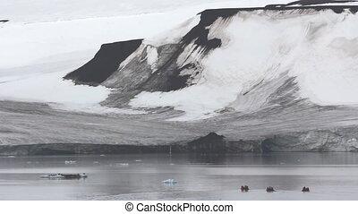 Tourists heading to lying on ice floe walruses on three...