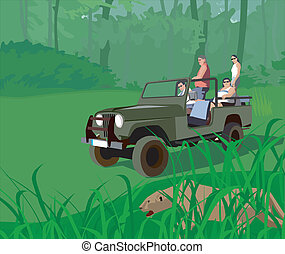 Tourists in safari vehicle looking at tiger