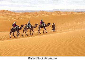 Tourists on safari, Morocco