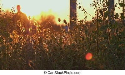 Tourists walking in sunset tive view through wild grass...