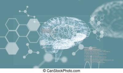 tourner, bleu, blanc, humain, incandescent, fond, animation, cerveau, 3d