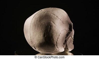 tourner, crâne, humain