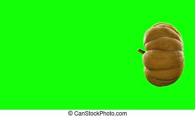 tourner, vert, canal alpha, 3d, citrouille, fond, 4k