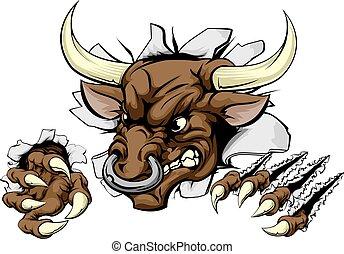 touro, esportes, mascote, quebrar, parede