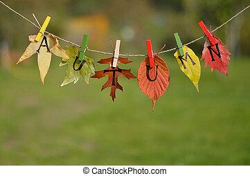 touwtje, met, bladeren, en, brieven, spelling:, herfst