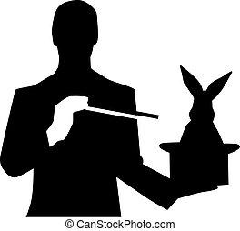 tovenaar, hoedje, konijn