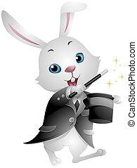 tovenaar, konijn