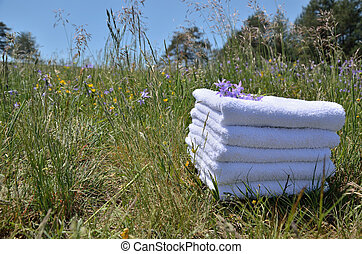 Towels on meadow with violet flowers