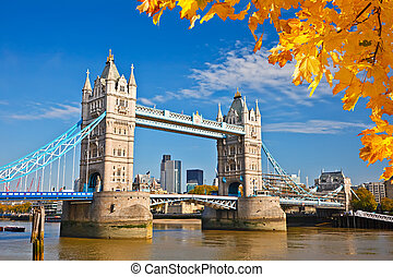 Tower bridge in London - Tower bridge with autumn leaves,...