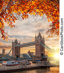Tower Bridge with autumn leaves in London, England, UK