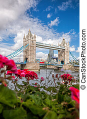 Tower Bridge with flowers in London, England, UK