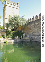 Tower in the Alcazar