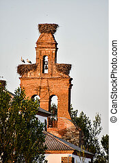 tower of church, photo as a background