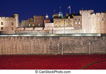 Tower of London and Poppies at Dusk