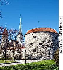 Tower Thick Margarita, Tallinn