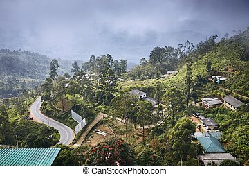 Town in the middle of tea plantations. Landscape in clouds. ...