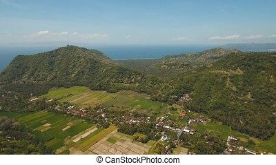 Town near the sea Bali, Indonesia - Village, town near the...