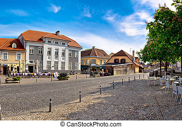 Town of Samobor square view