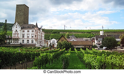 Town Rudesheim - Medieval house and the fortress behind it...