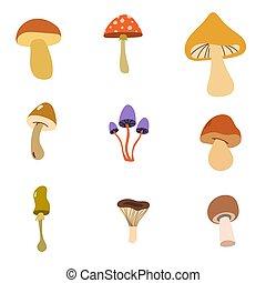 toxique, comestible, mushrooms.