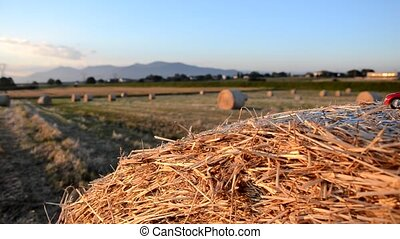 Toy car on a round bale
