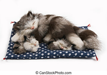 toy cat with two kittens
