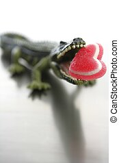 Toy cocodrile, aligator with candy Valentine red heart in his jaws