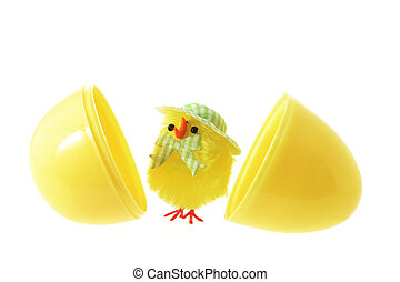 Toy Easter Chick and Egg Shells