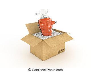 toy in cardboard box